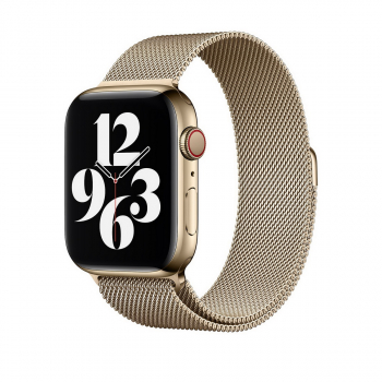 WiWU Apple Watchband 42 mm/44 mm, Minalo Stainless Steel, Local Gold